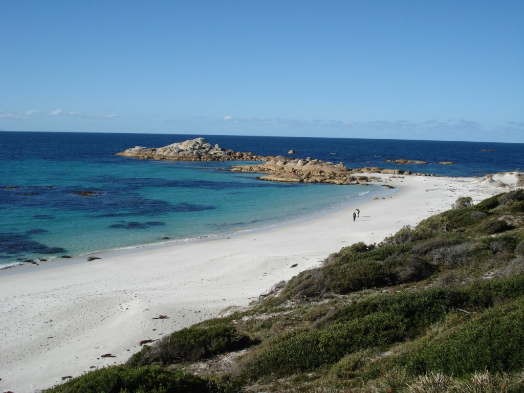 Stumpys_Bay_Beach,_Tasmania